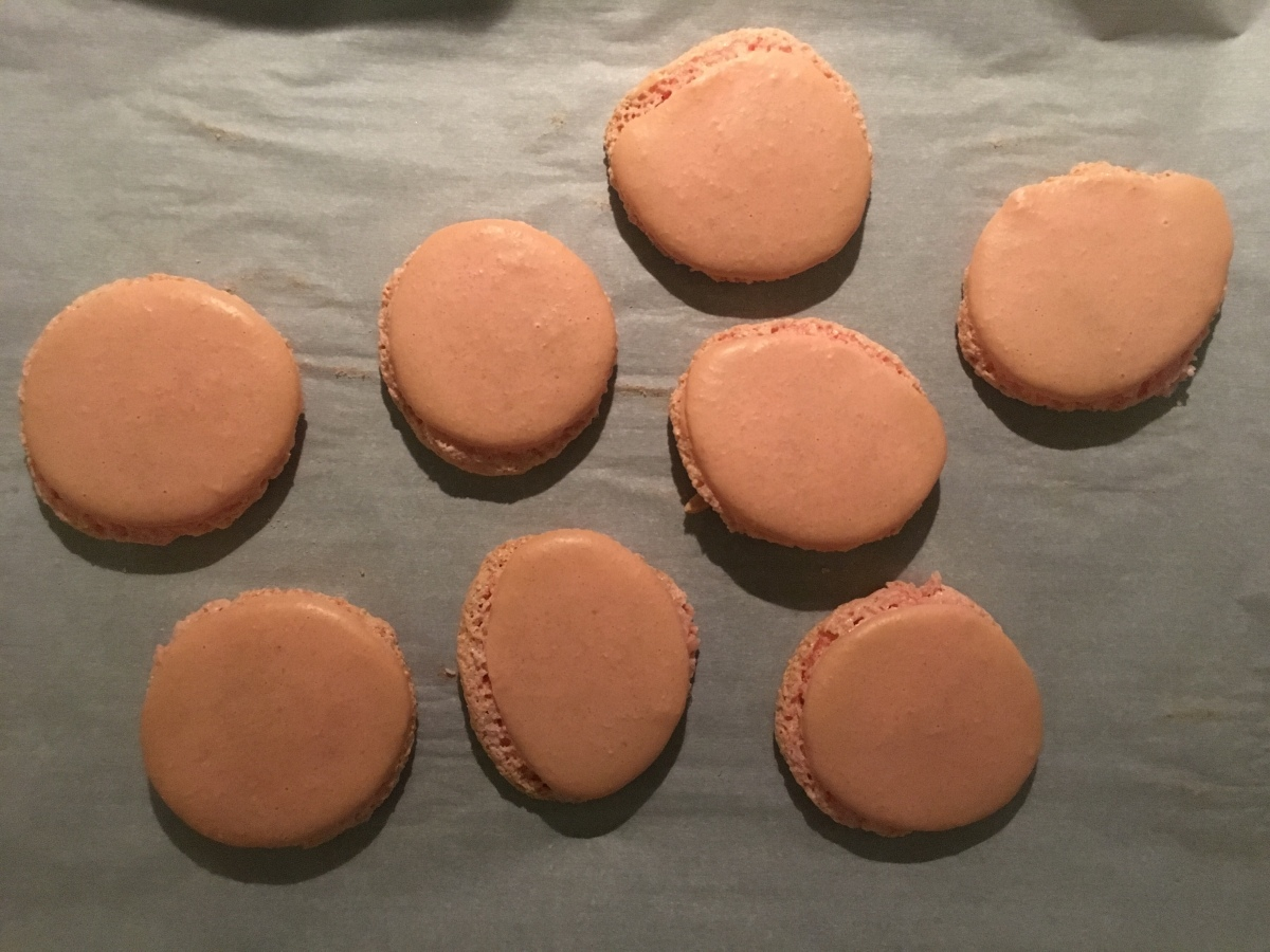 Adventures in Macarons